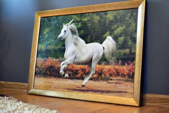 Obraz na ścianę Koń (1500 PUZZLI) Złota ramka