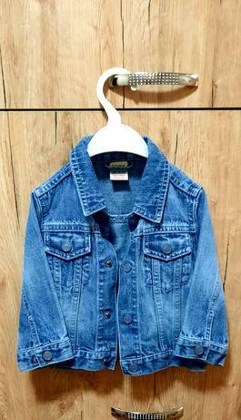 Жилетка, пиджак джинс