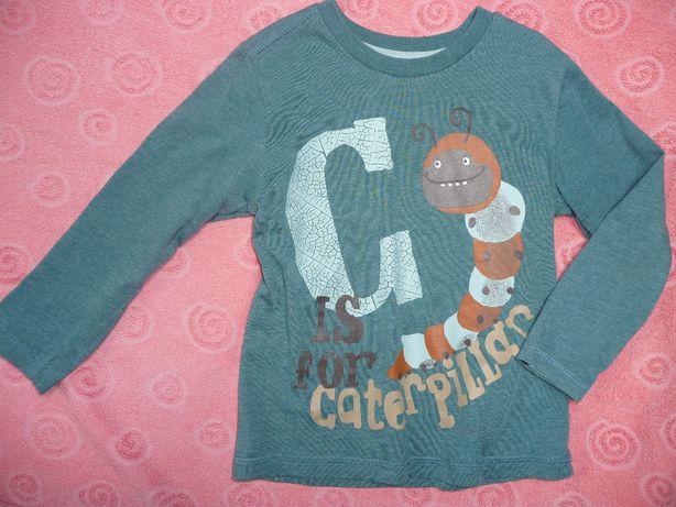 bluzka dla chłopca GĄSIENICA 3-4 latka