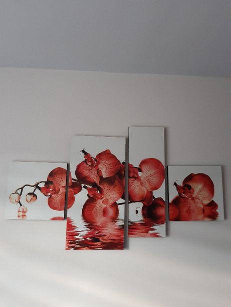 Obraz 4 częściowy - czerwone storczyki w wodzie