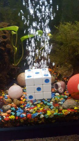 Termostato...bomba de ar...aquariofilia