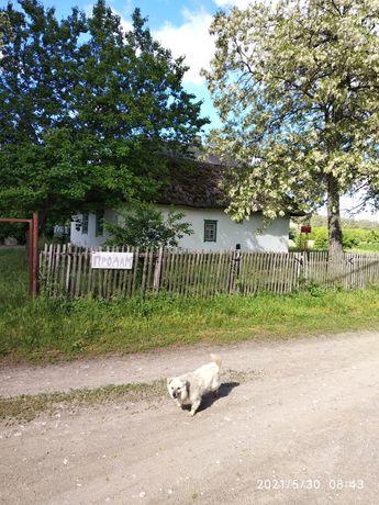 Продам дом в Шульговке возле леса