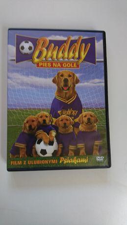 "Film pt. ,, Buddy pies na gole """