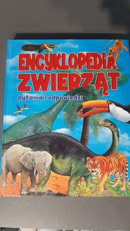 Encyklopedia zwierząt. Pytania i odpowiedzi. Wyd. Olesiejuk