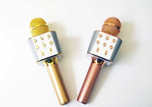 система WS-1688 - (для караоке) / универсальный, микрофон / ручная /