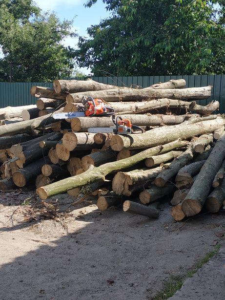 Порезка дров,покос трави трімером,валка та підрізка дерев.
