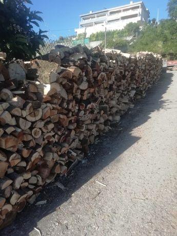 Lenha seca madeira Carvalho e Australia