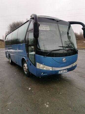 Автобус Yutong ZK6831HE 2008року