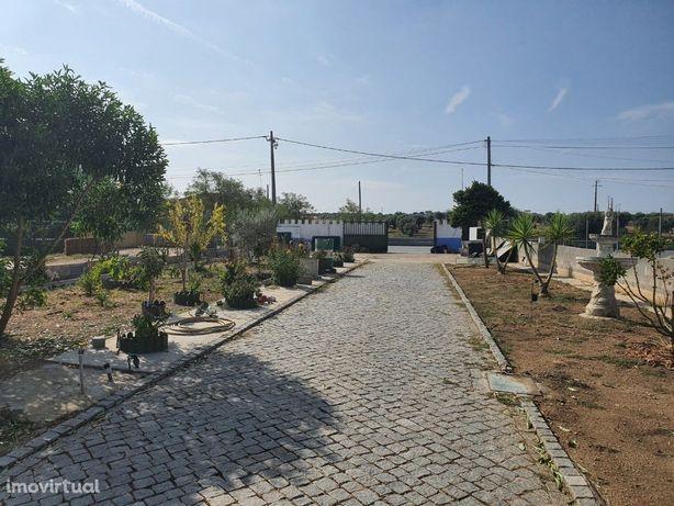 Terreno urbano com pavilhão agrícola no Vimieiro