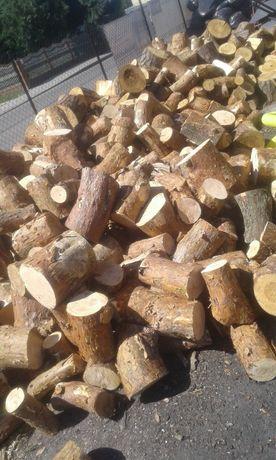 Suche drewno opałowe Brześć i okolice