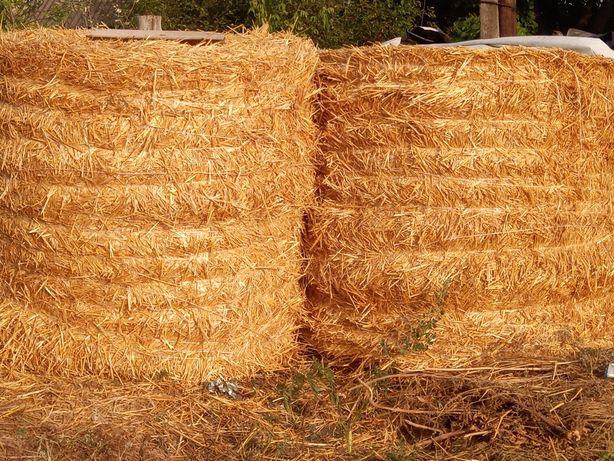 Продам, солому пшеничную