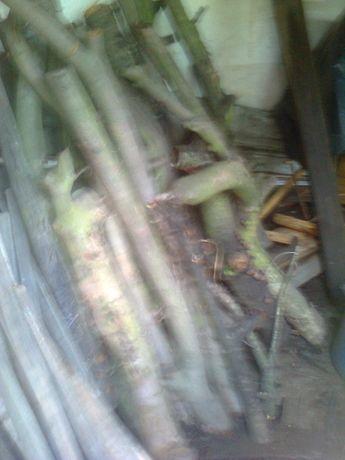 drewno wiśniowe