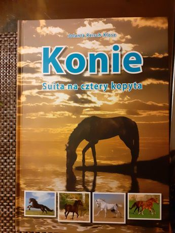 Książka  : Konie- siuta na cztery kopyta