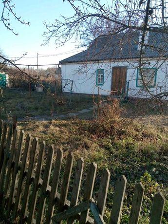 Дом в с. Суворовское (возле пгт. Кринички)
