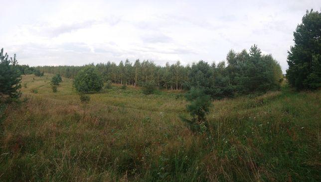 Działka leśna 3,03ha Florczaki gm.Łukta