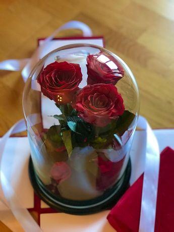 Роза в колбе/Золотая Роза/Розы в Вазе/Подарок/Живая /Коробка бесплатно
