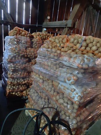 Ziemniaki GALA 15kg