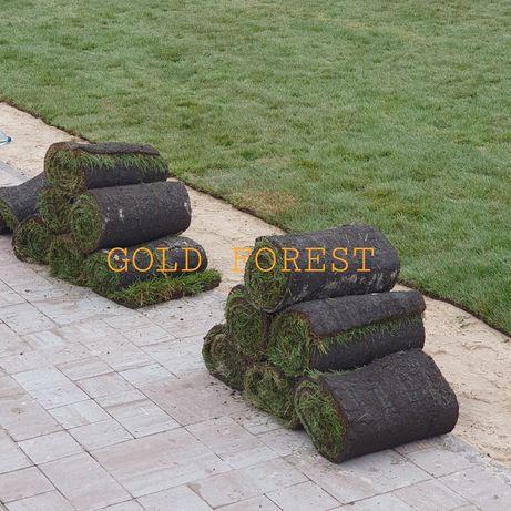 Автополив, рулонный газон, ландшафтный дизайн, озеленение под ключ