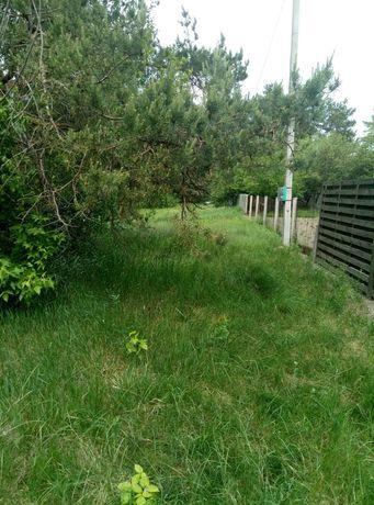 Липовый Скиток, крайний участок от леса, 15 с., хозяин.