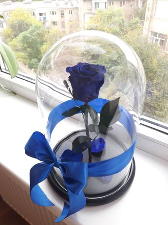 Роза в Колбе +Гравировка,Коробка,Сертификат/Гарантия.Тренд 2020 года