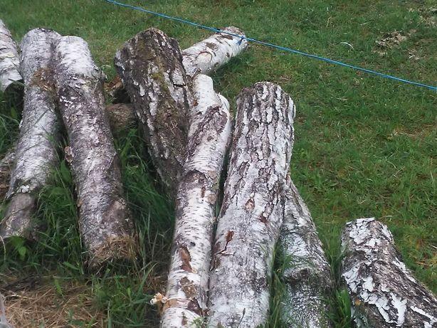 Drewno olcha metry klocki do wędzarni brzoza w klockach kominkowe