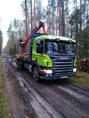 Transport drewna drzewa opału