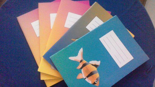 zeszyt zeszyty dla dzieci niedowidzących oraz z trudnościami w pisaniu