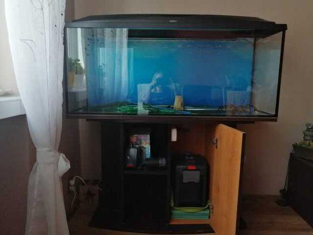 Akwarium 200 litrów z wyposażeniem