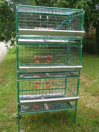 клетки для бройлеров и несушек, брудер для цыплят,