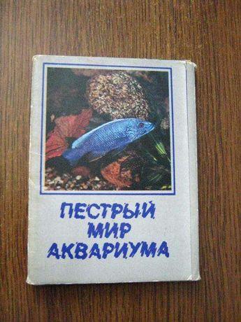 Фото открытки Пестрый мир аквариума,Выпуск №3 Цихлиды