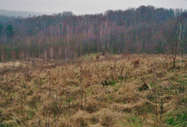 Działka rolno leśna Rakówiec k. Rudzienka 6300m2 - bezpośrednio