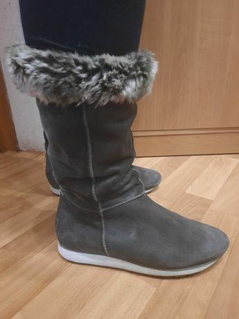 Зимние тёплые сапоги  ЄССО фирмы  Hogl размер 39