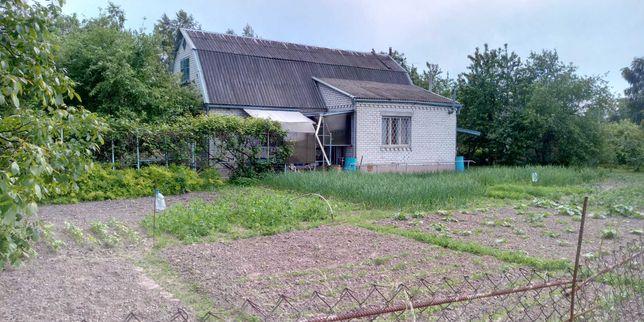 Дом с.Займище Бориспольский район