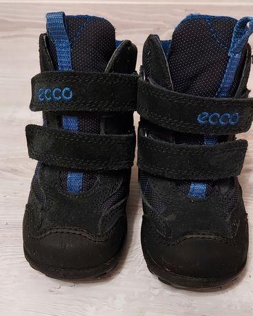 Зимние ботинка ecco