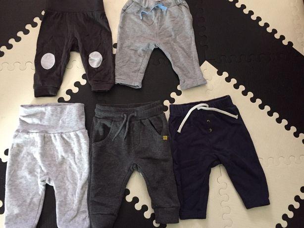 Spodnie dresowe 68 reserved 51015 lidl pepco