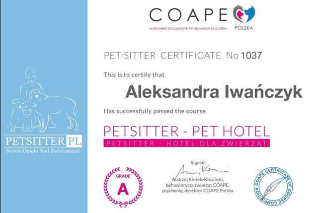 Petsitter/Catsitter, zadbam o kota w domu opiekuna
