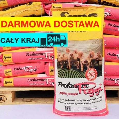 Piggi Sano koncentrat dla prosiąt 25kg 41,5% białka prosięta warchlaki