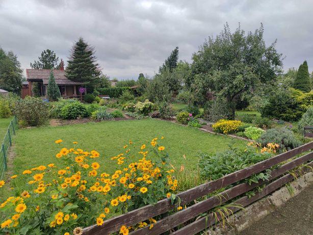 Ogródek działkowy z altaną