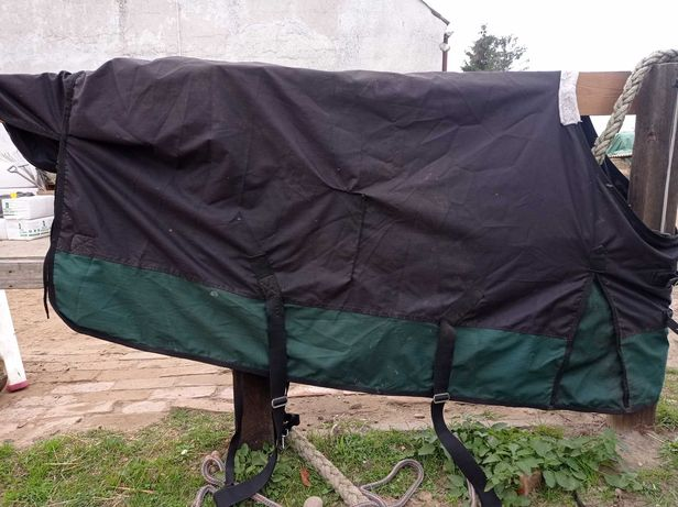 Derka padokowa START 145 cm