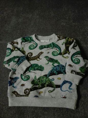 Bluza niemowleca