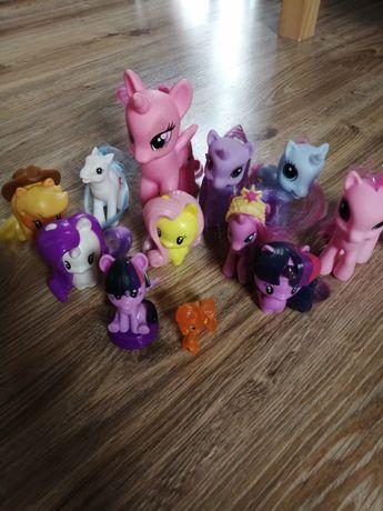 Koniki ponny