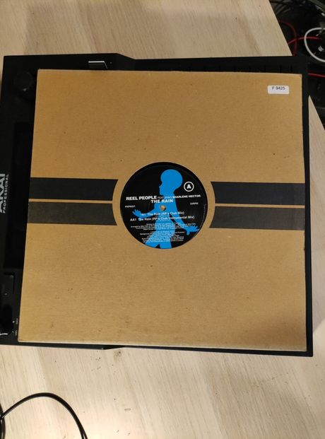 Reel People feat. Sharlene Hector - The Rain (PAPA021)