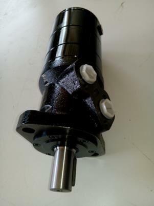Silnik hydrauliczny BMR 125 z Hamulcem