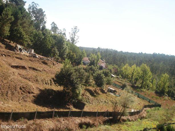Terreno com 5800 m2 em Pigeiros, Santa Maria da Feira