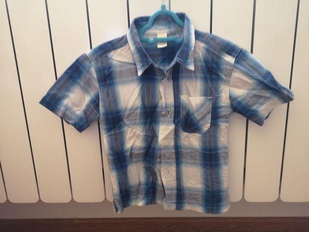 Niebieska koszula 86 92