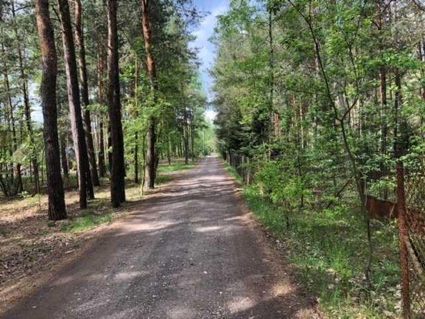 Działka/działki rekreacyjne, 6010 m2 - Strachów k/Urli (rz. Liwiec)