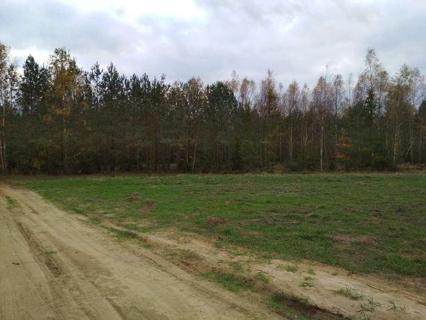 Chorzele działka z warunkami zabudowy 120 km od Warszawy