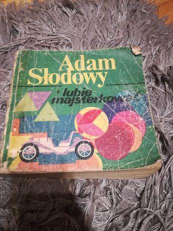 """Książka o Majsterokowaniu Adam Słodowy,, lubię majsterkować"""""""