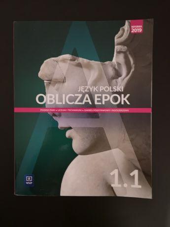 Język polski oblicza epok 1.1 podręcznik do szkół średnich, książka
