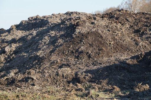 Odam Ziemię za darmo około 400 ton